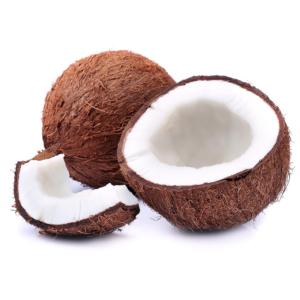 COCO coconuts on white 1000p