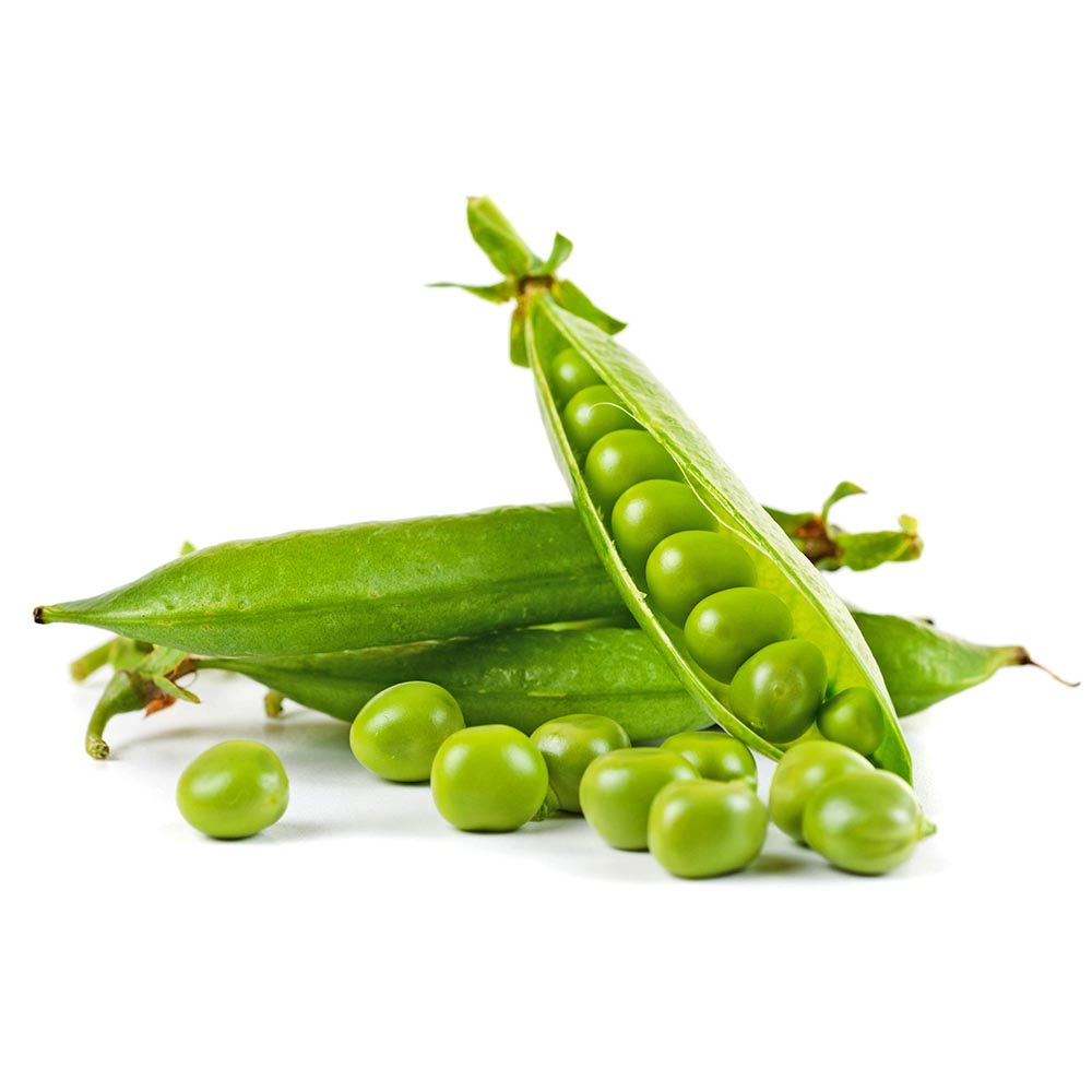 GUISANTES ripe pea vegetable with green leaf isolated on white space 1000p
