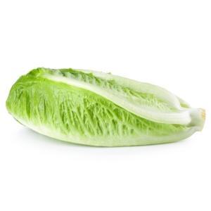 ensalada gourmet bolsa