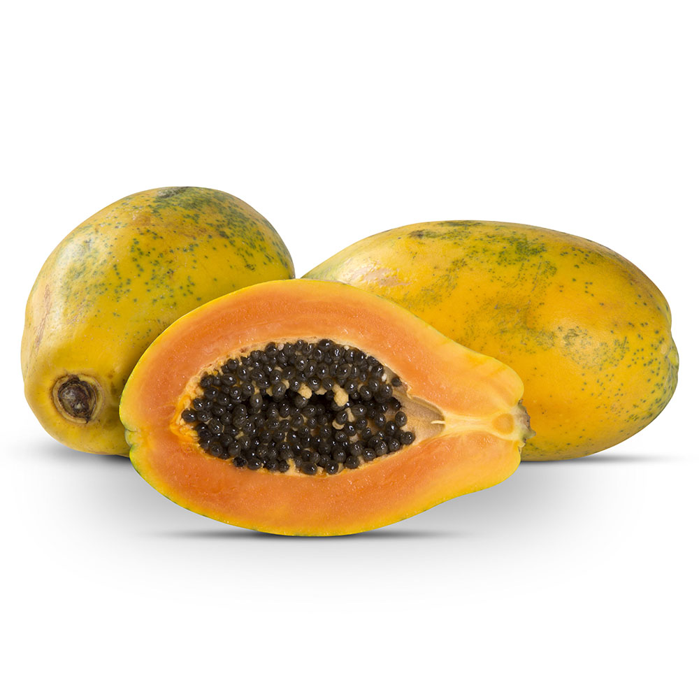 papaya gigante