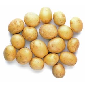 patata micro
