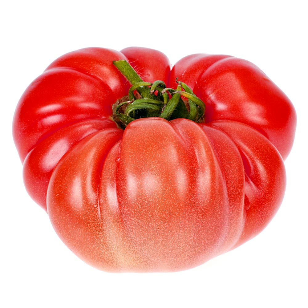 TOMATE ROSA big pink beef tomato isolated on white background 1000p