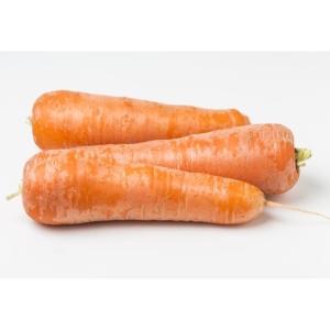 ZANAHORIA close up of three carrots 1000p