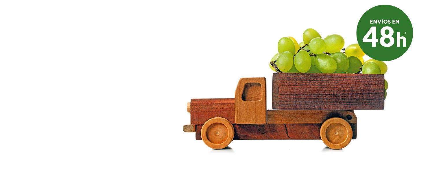Comprar fruta domicilio - Envíos en 48 horas